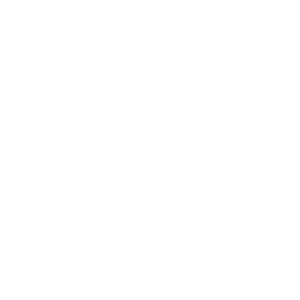 Zweites Icon des Menüpunktes 'Über IRIS®'